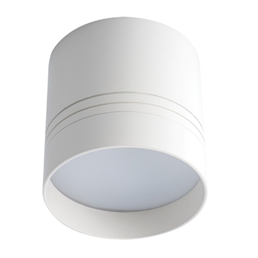Immagine di Proiettore di tipo downlight LED esterno a soffitto - OMERIS LED 25W-NW-W - per interno
