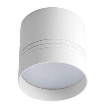Picture of Proiettore di tipo downlight LED esterno a soffitto - OMERIS LED 25W-NW-W - per interno