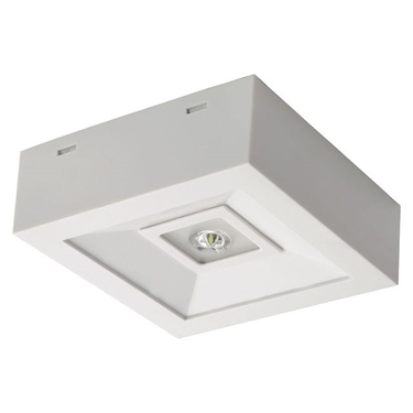 Immagine di Luce di emergenza con POWER LED - TRIC POWERLED - O - NT - 3W
