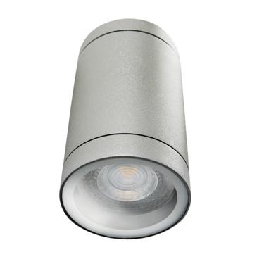 Picture of BART DL - 125  - IP54 -APPLIQUE A SOFFITTO PER ILLUMINAZIONE DA ESTERNO