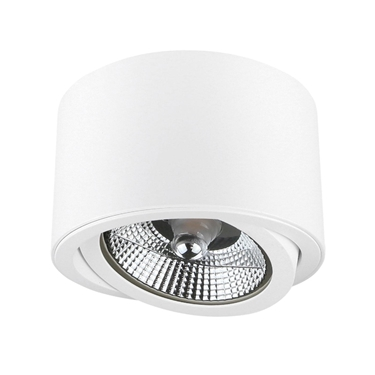 Picture of CHLOE AR111 IP20  - B - FARETTO DA SOFFITTO A RILIEVO - 139X100 - ORIENTABILE
