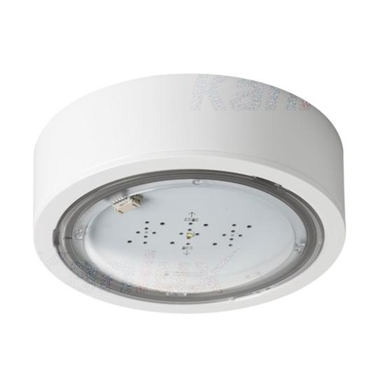 Picture of Lampada LED di emergenza ITECH - IP65 - interruttore automatico - illuminazione antipanico - 5W - TEST STANDARD - 1H