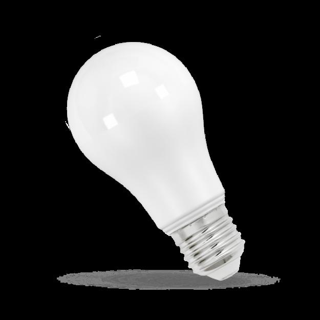Immagine di LAMPADA LED GLS - E27 - 17W - CW/WW