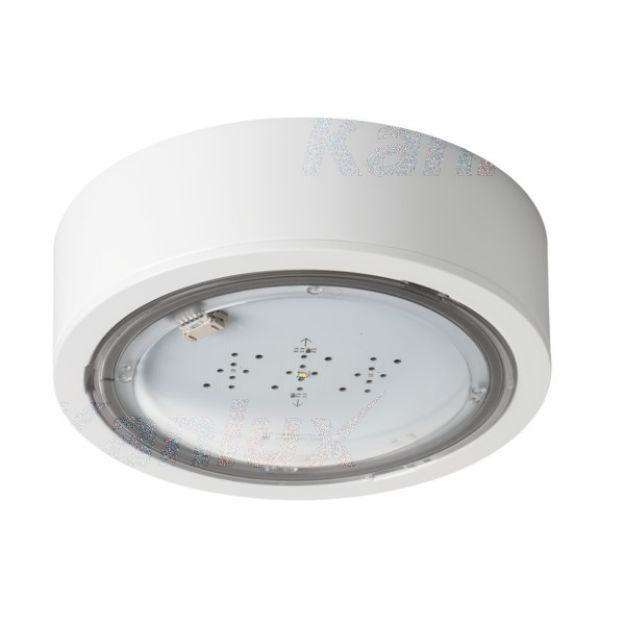 Immagine di Lampada LED di emergenza ITECH - IP65 - interruttore automatico - illuminazione antipanico - 2W - TEST AUTOMATICO - 3H