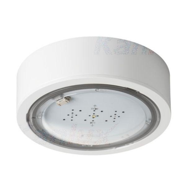 Immagine di Lampada LED di emergenza ITECH - IP65 - interruttore automatico - illuminazione antipanico - 5W - TEST STANDARD - 1H