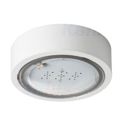 Immagine di Lampada LED di emergenza ITECH - IP65 - interruttore automatico - illuminazione antipanico - 1W - TEST AUTOMATICO- 1H